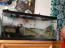 New listing Turtles fish tank