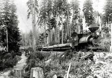 OR WA Pacific NW BW PHOTO V L Co Porter Loco Log Train