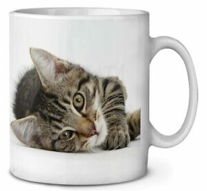 Adorable Tabby Kitten Coffee/Tea Mug Gift Idea, AC-204MG