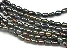 4-5mm Peacock Black Rice Oval Freshwater Pearls A Beads for Jewelelry Making