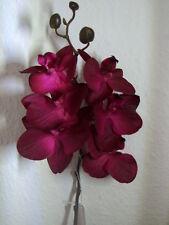 Orchideenzweig Phalenopsis - Ultra realistic Line