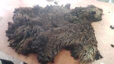 1.4kg Raw Sheeps Fleece Belwin Spinning Weaving Stuffing Insulation 165