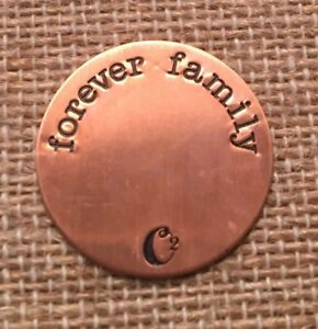 Origami Owl Large Rose Gold Forever Family Plate Charm NEW
