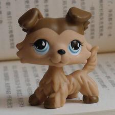 """LPS LITTLEST PET SHOP MINI 2"""" FIGURE TOY blue eyes Collie pubby Dog #893"""