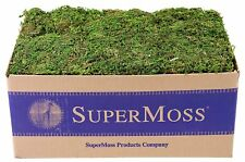 - New - Super Moss Mountain Moss Preserved Free Shipping!