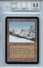 MTG Alpha Taiga BGS 8.5 NM-MT+ Magic WOTC Dual Land Card 7908