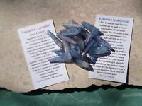 Platinum infused Tanzanite Aura Quartz 20 Lemurian Points-46 grams-Creativity!