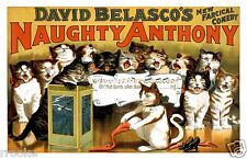 Naughty Anthony SINGING CATS Vaudeville Vintage Theater Poster / Fine Art Print