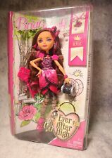 Ever After High Royal Briar Beauty Doll Bbd53