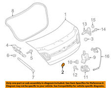 FORD OEM-Trunk Lid Bumper W715246S300