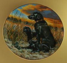 Labrador Retrievers Classic Sporting Dogs Plate Lab