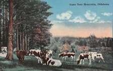 Henryetta Oklahoma Cow Pasture Greeting Antique Postcard K73523