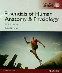 Value Pack Essentials of Human Anatomy & Physiology Global Edition + Modified Ma