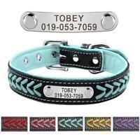 Personalisiert Hundehalsband mit Namen Lederhalsband Katzenhalsband Welpenkragen