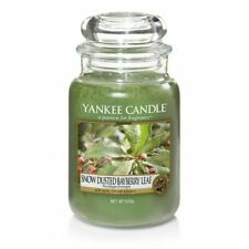 Yankee Candle Large Jar Returning Classic Scent Snow Dusted Bayberry Leaf 623g