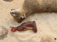 Rare Antique Ancient Egyptian Amber Precious Statue God Cat Protection 1840 BC
