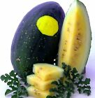 15 WATERMELON - MOON AND STARS YELLOW - SEEDS FRESH GARDEN US SHIPS OUT FAST