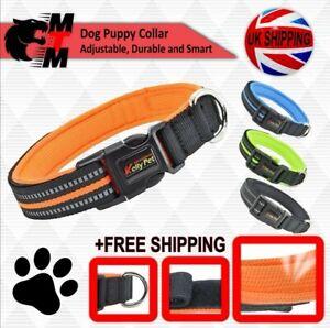 Dog Puppy Collar Adjustable Durable Smart Nylon Small/ Medium/Large Many Colours