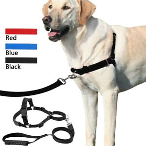 Non Pull Front Leading Dog Harness and Lead set Adjustable Nylon Walking Lead