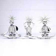 (3) Trader Joe's Skeleton Yogi Air Plant Planter Yoga Skulls Sukhasana Lotus Lot