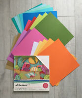 "AMERICAN CRAFTS Variety Cardstock Pack 12x12"" 60 Pack TROPICAL Crafts 20 Colours"