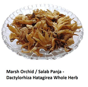 Marsh Orchid Salab Panja Dactylorhiza Hatagirea Boosts Libido Vigor 100% Herbal