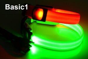 LED Nylon Leuchthalsband, Hundehalsband per USB aufladbar Basic1, Basic2, Basic3