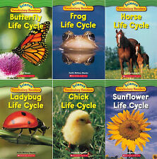 SCHOLASTIC SCIENCE VOCABULARY READERS Life Cycles (pb) 6 Book Set NEW