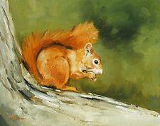 Original Oil painting - wildlife art - red squirrel- by j payne