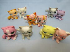 Littlest Pet Shop Lot 2 Random Angora Persian Cat Authentic Lps and Gift Bag