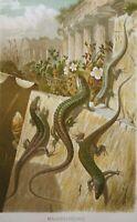 Antique Print Wall Lizard Alfred Brehm Tierleben Chromolithograph 1893