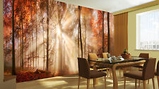 HQ Wall Mural Red Autumn Forest Sun Woods Trees Nature Photo Wallpaper Room 118