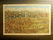 364 CUTTING SHOCKING AND STOCKING SUGAR CANE 1941 BLACK AMERICANA