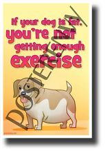 Fat Dog - NEW Health and Safety POSTER