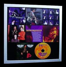 JIMI HENDRIX+Experienced+LTD+GALLERY QUALITY FRAMED+FAST GLOBAL SHIP+Not Signed