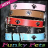 Puppy Dog Kitten Cat Leather Collars PINK BLUE BLACK RED BROWN Pamper your PET