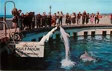 Florida, FL, FT Walton Beach, Gulfarium Feeding Time Chrome Postcard