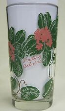 Trailing Arbutus Peanut Butter Glass Glasses Drinking Kitchen Mauzy 99-6
