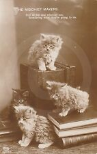 "RPPC of FOUR KITTENS ""The Mischief Makers"" CAT Postcard REAL PHOTO Photograph"