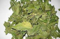 A Organic Neem Dried Leaf 100% Pure & Natural,Premium Quality Ceylon srilanka50G