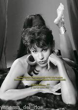 Vanessa del Rio Photo Collectible BARBARA NITKE 8x10 Sign Aft BUY w/COA