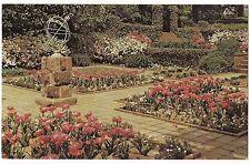Spring Bloom in Flower Garden Agecroft Hall Richmond Va Postcard Virginia
