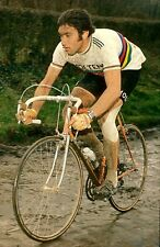 EDDY MERCKX 1975 TOUR OF FLANDERS WORLD CHAMPION POSTER