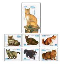 KUB9401 Cats of different breeds 6pcs and block MNH 1994