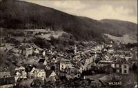 Wildbad Baden Württemberg Schwarzwald alte AK 1909 Totale Teilansicht Stadt Wald