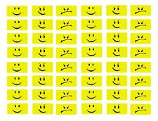 1/24 1/25 scale model car smiley smirky angry face license plates tags
