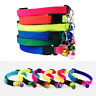 Rainbow Neon Rave Hi-Vis Puppy Cat Collar Multi Colour Bell Adjustable Small Dog