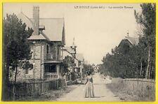 cpa 44 - LA BAULE (Loire Atlantique) La Nouvelle Avenue Animée CHÂLETS VILLAS