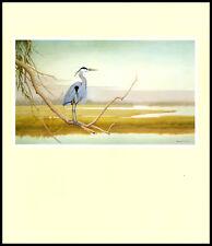 "Great Blue Heron Painting—John W Taylor—Book Art Print 10x12"""