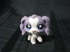 littlest petshop Dog Purplelavender Cocker Spaniel# 672 Rare Very Good Condition